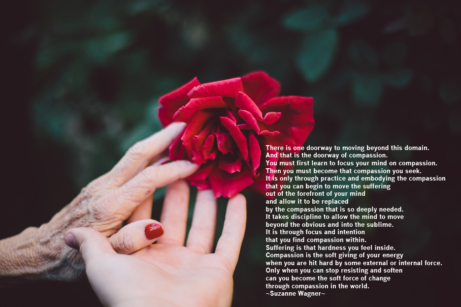 oldhandyounghandflowercompassionquote