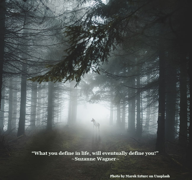 Define Quote   Suzanne Wagner Quote What You Define In Life Will Eventually