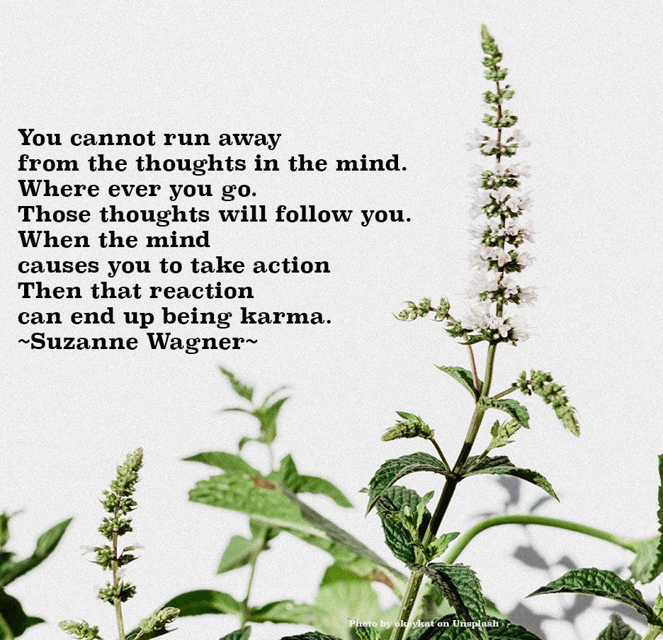 floweringplantwithwhitebackgroundquotesw