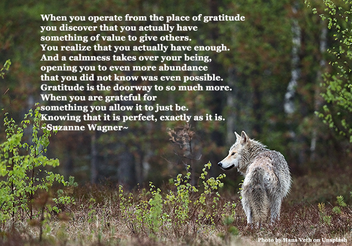 wolfintheforestquotesw