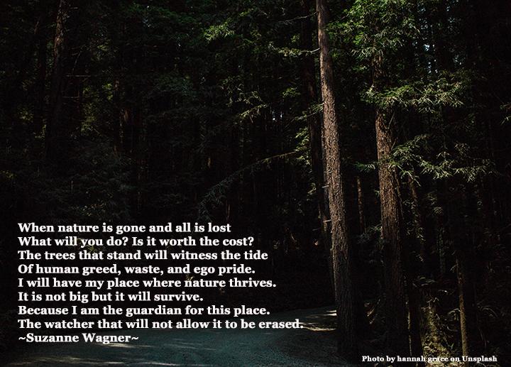 redwoodsandacreekquotesw